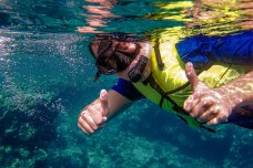 frequent-supervised-snorkeling-and-diving-trips_13295861814_o